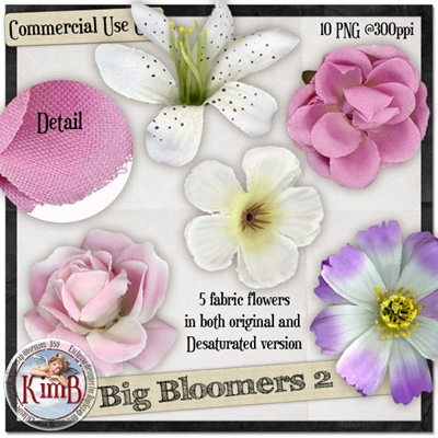 kb-bloomers2