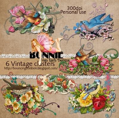 BvanEsch_VintageClusters_PREVIEW
