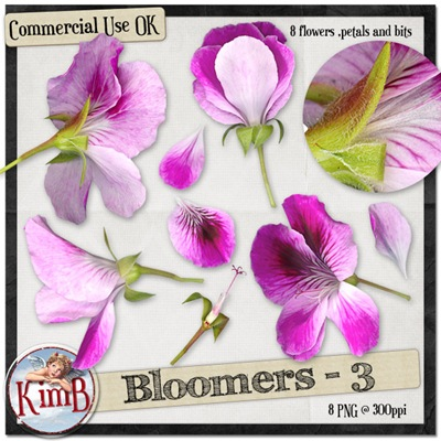 kb-bloomers3