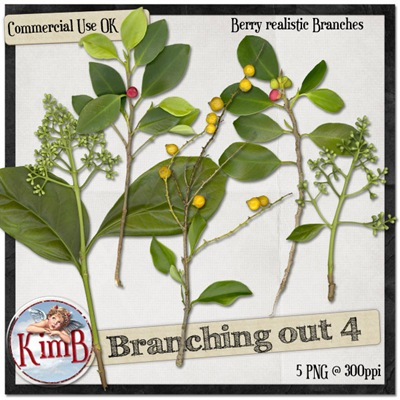 kb-branchingout4