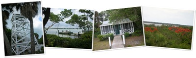 View Cabbage Key