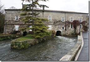 23rd Nov 2010 Charente (4)