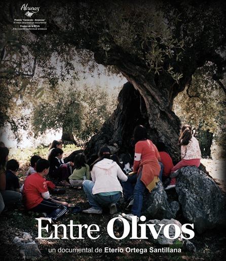 entre olivos