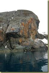 Lichen growing on rocks