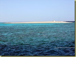 Big Sea Yol