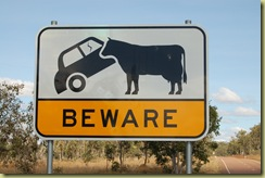 Car and Cow sign