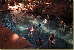 Thermal Pool Mataranka