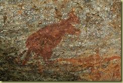 Kangaroo (Lifesize)