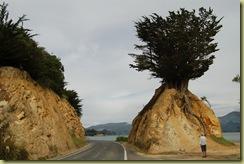 Road Hazard