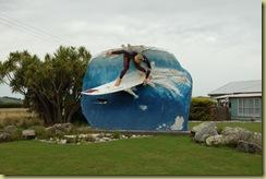 Colac Bay Surfer