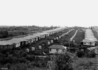 norman park houses 1950