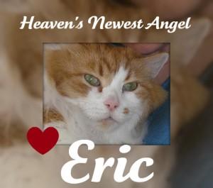 RIP-Eric-2010-08-16-300x265.jpg