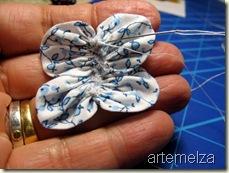 borboleta de fuxico oval - antena