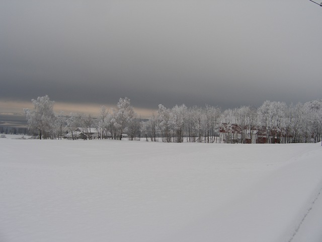 Febr2009 042