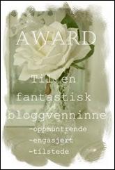 award fra Solveig