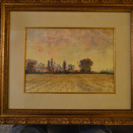 Tuscany Field by Craig Higgins - Painting All Painting