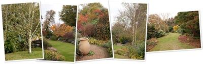 View Denmans Gardens