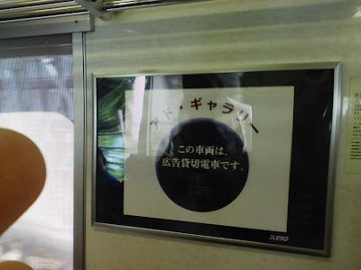 ハセガワアツシ,長谷川淳,はせがわあつし,Atsushi Hasegawa,エゾノギシギシ用