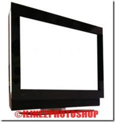 image-inside-tv-1[1]