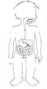 digestivo 1.JPG