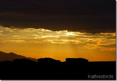 0077 Sunrise 6-2-08