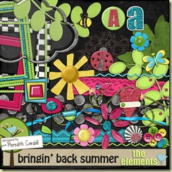 MCardall_BringinBackSummer_prev_elements