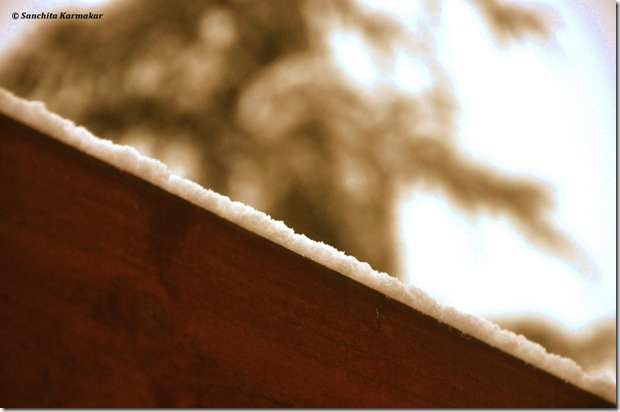 Snow_415