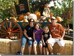 pumpkin patch 137