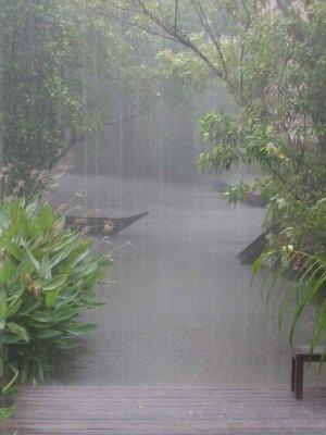 [rain[3].jpg]