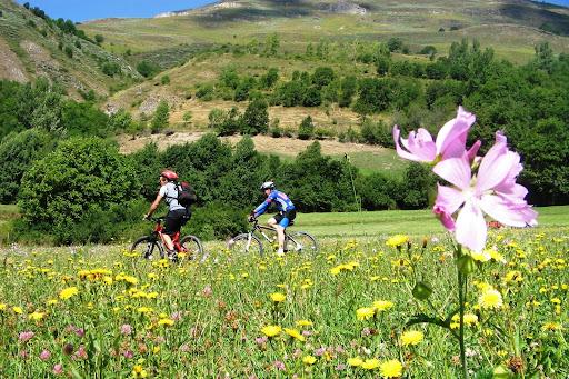 Bici Vall d'Aran.jpg