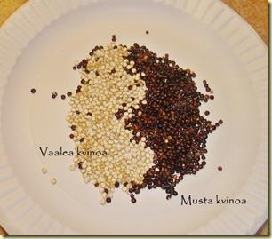 2 kvinoaa