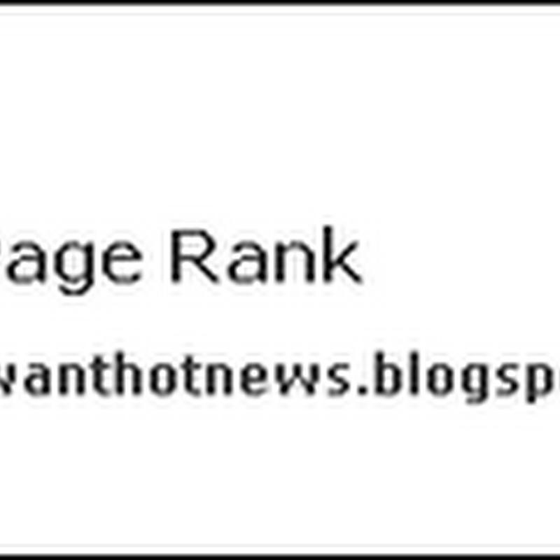 DirectPageRank.com 檢測網站的Page Rank