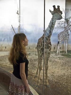 Дівчинка і жирафа