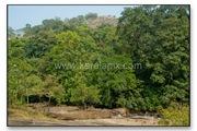 TMKH_063_thommankuth_kerala_keralapix.com_DSC0067