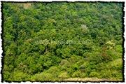 NLPY_001_www.keralapix.com_DSC0029