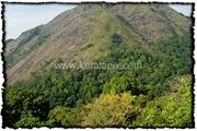 NLPY_008_www.keralapix.com_DSC0294