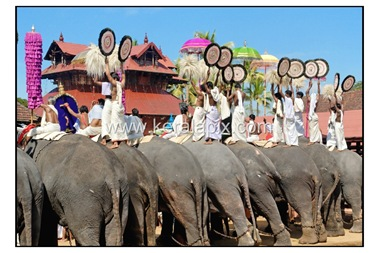 TPRA_026_DSC0150_www.keralapix.com_kerala