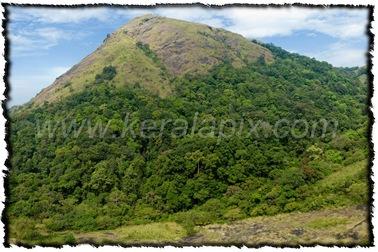 NLPY_012_www.keralapix.com_DSC0033_DSC0046