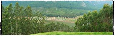 MNR_293_www.keralapix.com_DSC0293_DSC0295