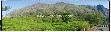 MNR_182_www.keralapix.com_DSC0006_DSC0009