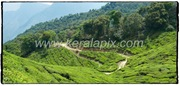 MNR_229_www.keralapix.com_DSC0261_DSC0262