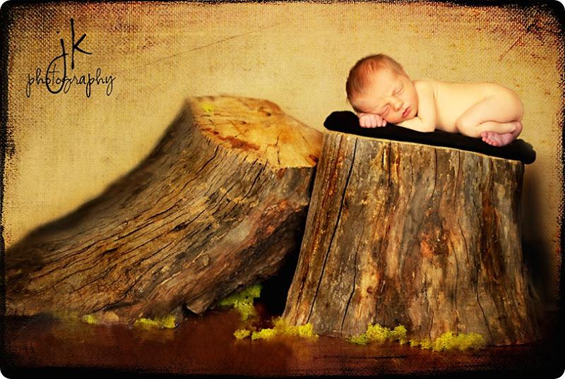 baby Maddox  log 8407 weblogo