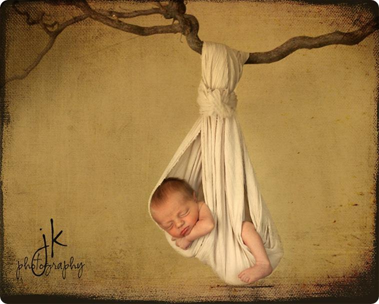 Maddox swing from treeweblogo