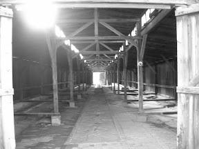184 - Auschwitz II - Birkenau.JPG