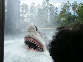 430 - Jaws.JPG