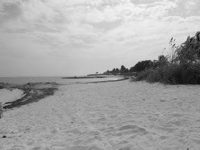 590 - Sombrero Beach.JPG