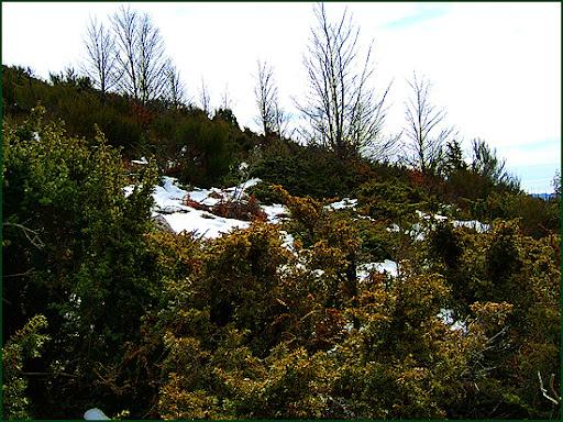Ascenso a Les Agudes desde Fontmartina por el GR 5-2 5766