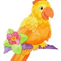 Aves (8).jpg