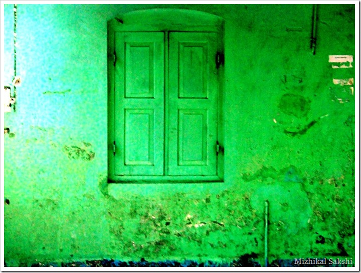 green window1