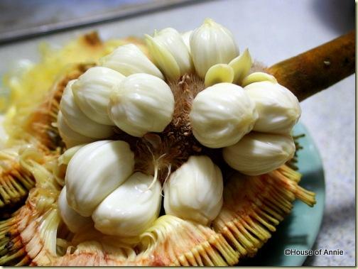 buah tarap fruit